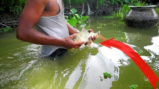 Catching Fish UnderWather Best Diving and Fishing With Hand Fishing Method P 195