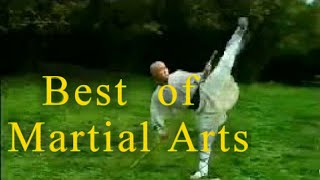Unstoppable martial arts