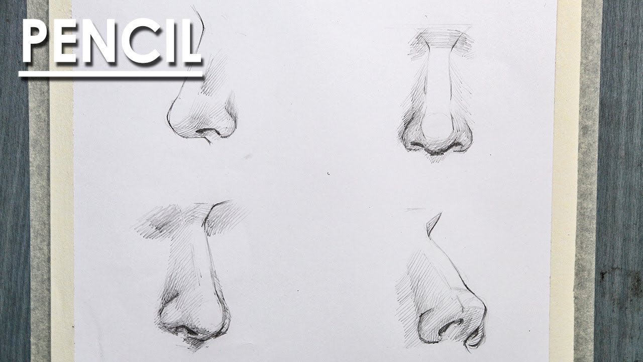 Easy way to draw noses from different angle in pencil step by step