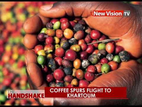 The Handshake: Coffee Spurs flight to Khartoum