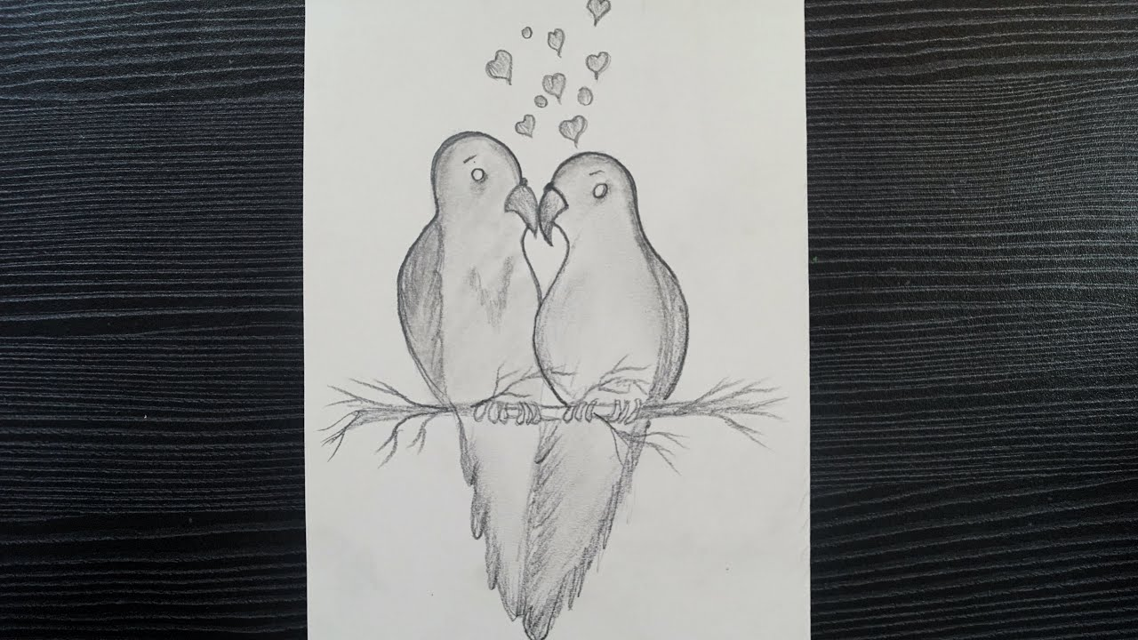 Love Birds Drawing With Pencil How To Draw Two Love Birds Drawing Loving Birds Pencil Drawing Youtube