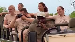 Поразительный Документальный фильм- BBC - о природе и животных дикой Африки