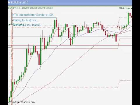 Day trading forex live room