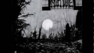Nuit Noire - Magical Blast