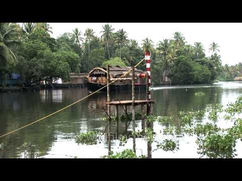 Rowing through the backwaters of Kerala