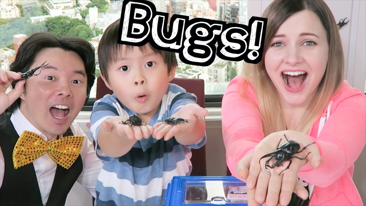 POPULAR JAPANESE PETS: BUGS!! | #YTSummerSchool