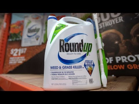 """Monsanto's Weed Killer is """"Substantial Factor"""" in Cancer, Says Jury"""