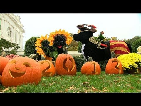 White House gets decked out for Halloween