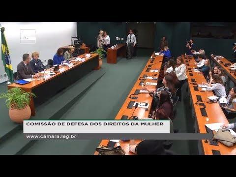 DEFESA DOS DIREITOS DA MULHER - Seminário - 13/06/2018 - 14:34