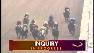 Best Wildest and Craziest Horse Racing Fight Ever With Punches and Whips