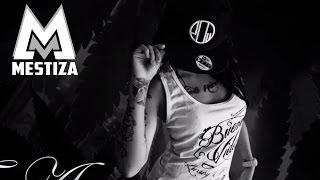 Mestiza - Resentimientos [Official Audio]