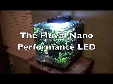 Fluval Performance Nano LED: Unboxing and Setup