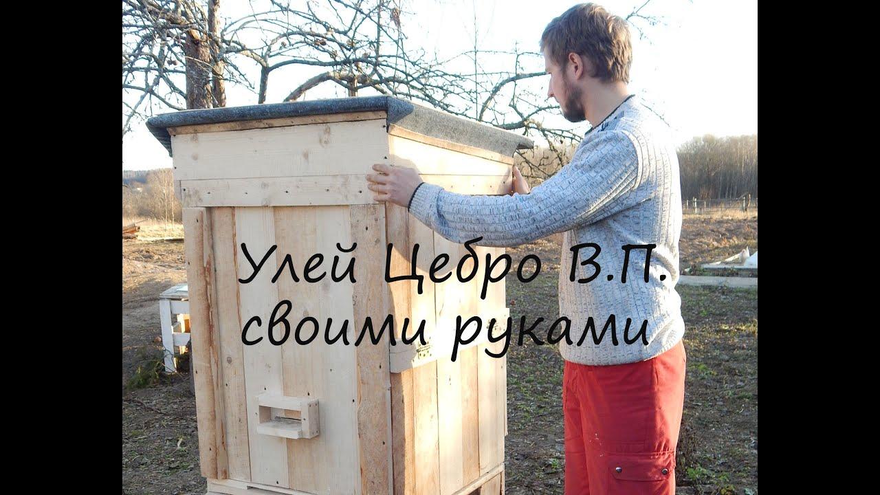 Пчеловодство своими руками видео фото 445