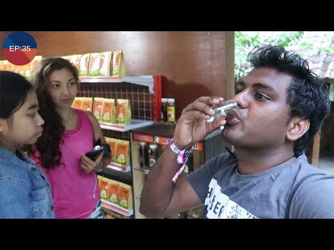 Having  Most Expensive Coffee in Bali || Must Watch