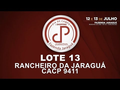 LOTE 13 (CACP 9411)