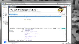 How to unlock and change the region of a Gamesave in Bruteforce Save Data