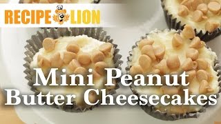 Mini Cheesecake Recipe With Reese's Peanut Butter Cups