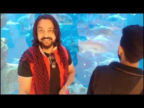 Dubai Mall – Dubai Mall Aquarium – Enjoy Karo mere bhaiyo