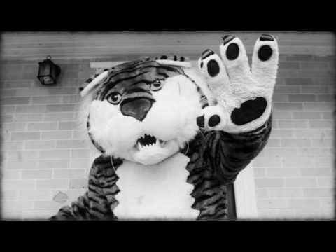 Lsu Mike The Tiger Instructional Video Youtube