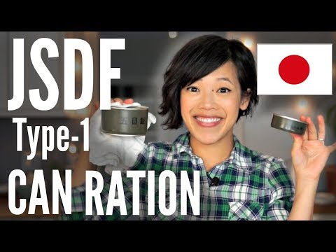 Japanese CAN Ration TASTE TEST | Type-1 JSDF Japanese Self-Defense Forces MRE