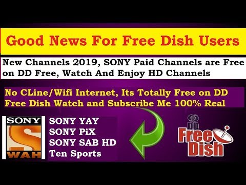 Sony Wah Frequency On Dd Free Dish | Sony Paid Channels Are Free |
