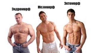 типы телосложения мужчин: мезоморф, эндоморф, эктоморф. Атлетизм ( 3)