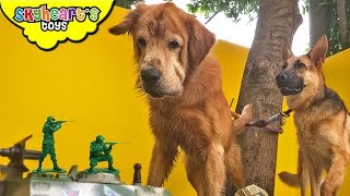 GIANT MONSTER DOGS VS. ARMY - Who's going to win? Military Soldiers Tanks toys for kids pets