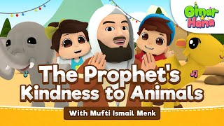 Omar & Hana ft Mufti Ismail Menk | The Prophet's Kindness To Animals | Islamic cartoon