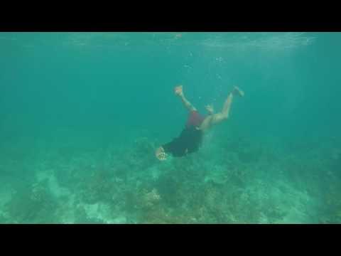 Bohol 2017 05-04@0824 Loon Basdacu Deep Sea Gerj Style