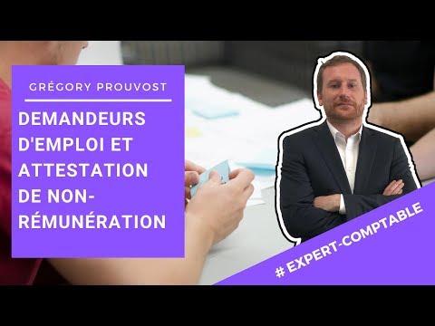 ENTREPRENEUR & POLE EMPLOI :ATTESTATION DE NON REMUNERATION] Conseil d'expert comptable