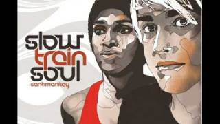 Slow train soul-Sexing the cherry