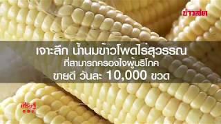 เจาะลึก น้ำนมข้าวโพด ไร่สุวรรณ ครองใจผู้บริโภค ขายดี  10,000 ขวด/ วัน