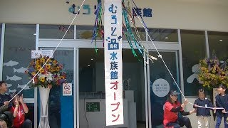 むろと廃校水族館がオープン 高知・室戸