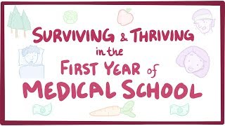 Surviving & thriving in the first year of medical school
