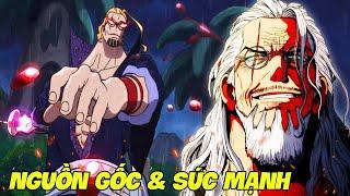 Vua Bóng Tối Silver Rayleigh: Nguồn Gốc & Sức Mạnh | One Piece Story #1