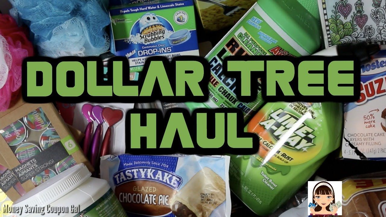 DOLLAR TREE HAUL - YouTube