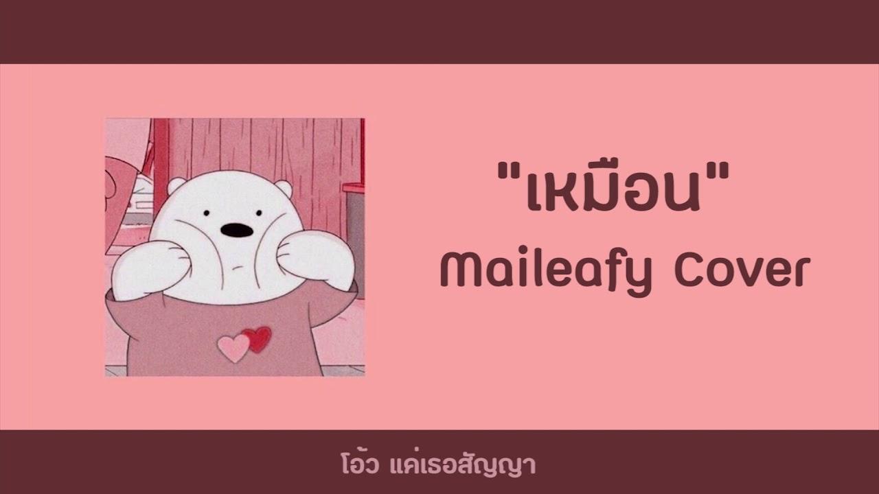 เหมือน - Maileafy ( 25 hours )