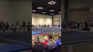 Regionals floor 2017