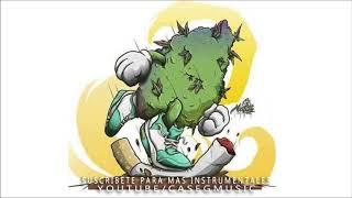 Base de rap   - mi hierba es natural  -  uso libre  - hip hop reggae instrumental