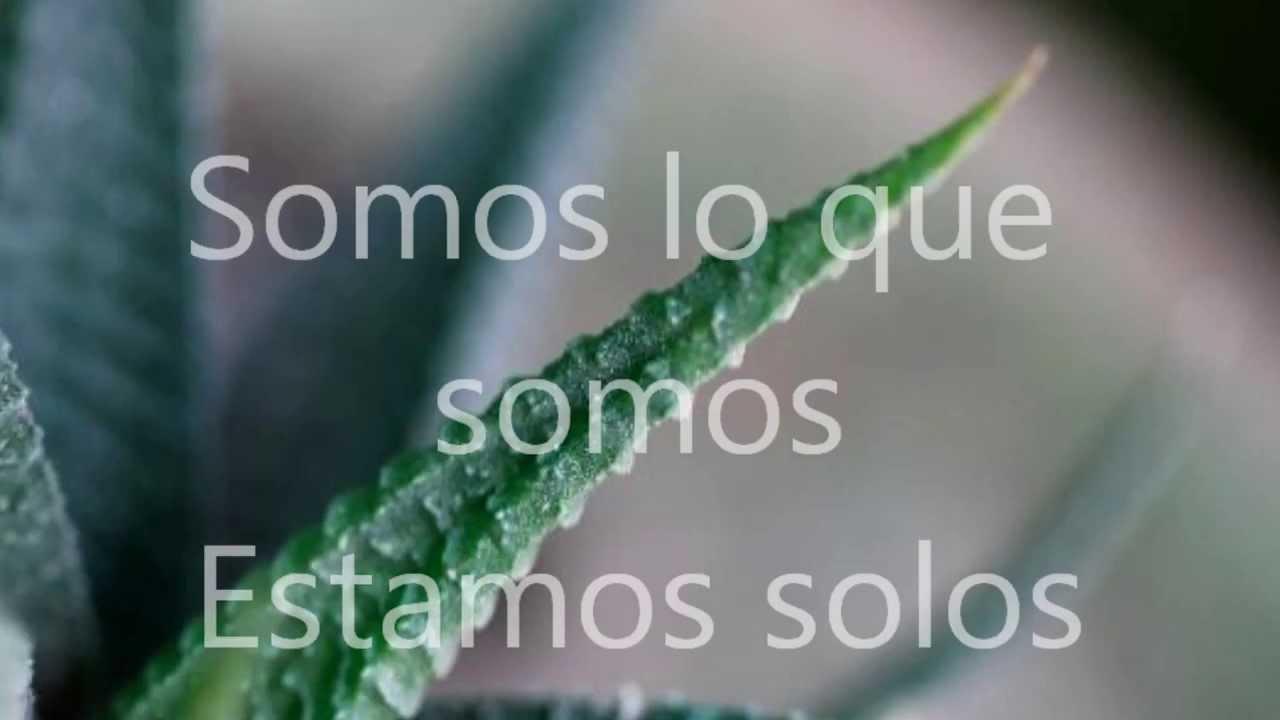 Descargar La Cancion Hablame De Beto Cuevas Download