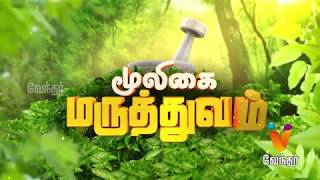 Mooligai Maruthuvam – Vendhar TV Show