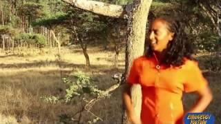 Nibret Walelign - Yeteyim Aynama የጠይም አይናማ(Amharic)