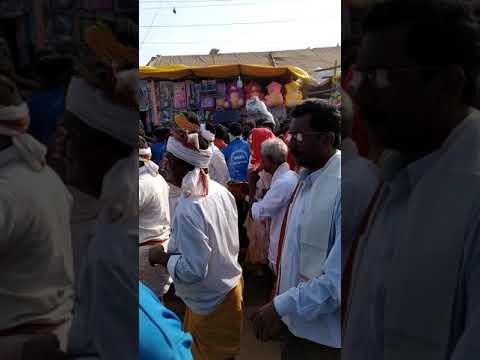 Sammakka thalli arrival live