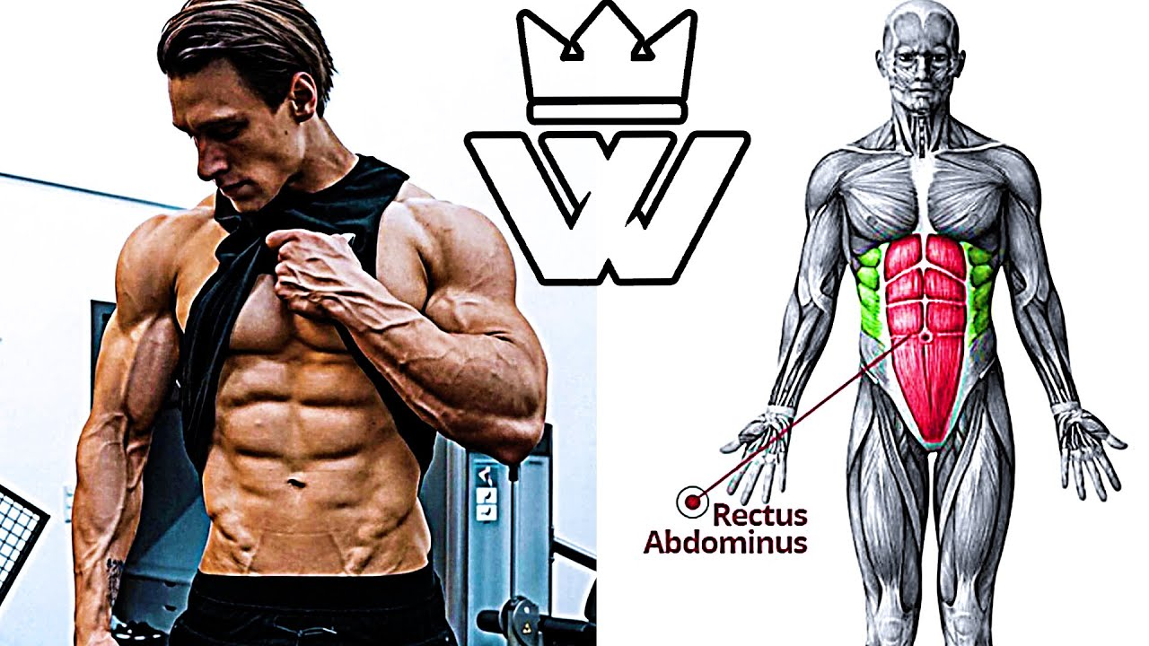 ABS WORKOUT | CORE SHREDDER CIRCUIT