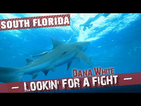 Dana White: Lookin' for a Fight – Season 4 Ep.2