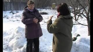 видео Правила обрезки плодовых деревьев и советы новичкам