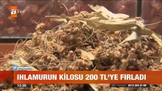 Ihlamur'un kilosu 200 TL'ye fırladı - atv Gün Ortası Bülteni