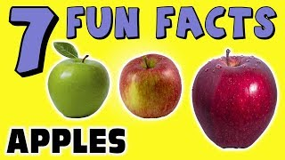 7 FUN FACTS ABOUT APPLES! APPLE FACTS FOR KIDS! Granny Smith! Fuji! Learning Colors! Sock Puppet!