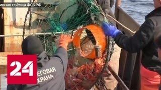 Приморские пограничники задержали японских браконьеров - Россия 24