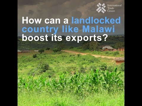 Malawi: export potential and trade challenges